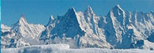 스위스한인연합회